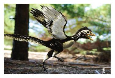 Above: an artist's depiction of Archaeopteryx.